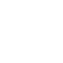 Donocle